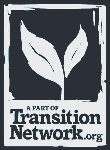Logo di Transition Network